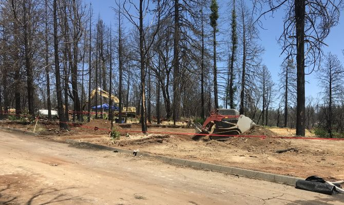 Tree Removal Services Project for the Camp Fire in Butte County